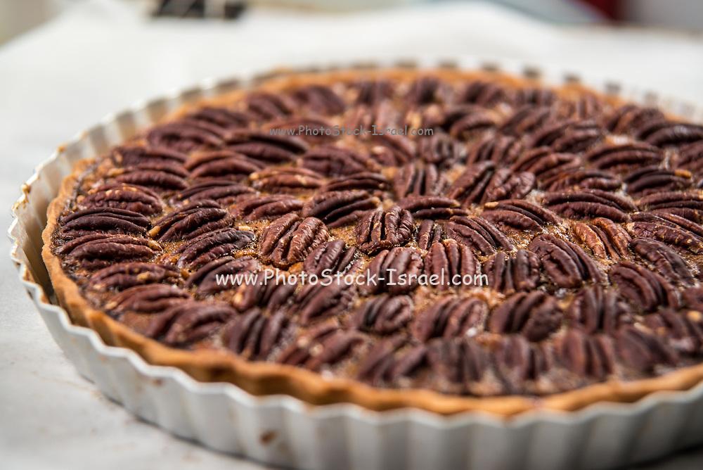 Freshly bakes Pecan pie