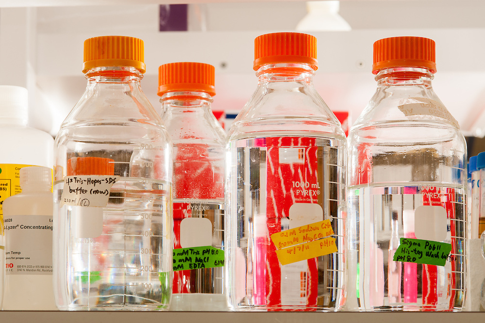 Lab bottles with clear liquid and orange lids in a science lab in College Park, Maryland