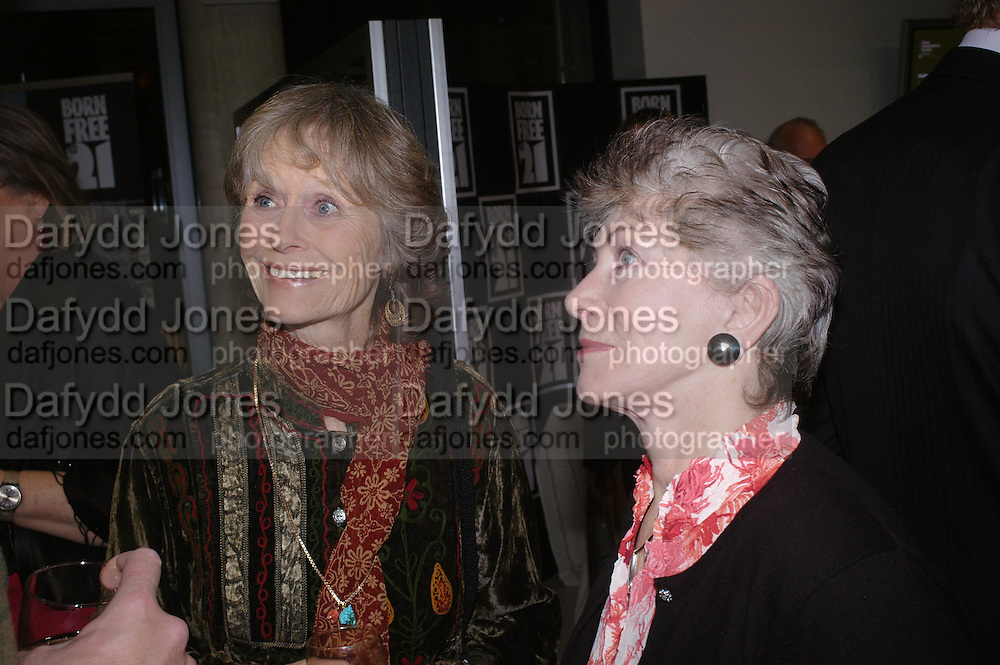 Virginia Mckenna and Valerie Singleton. Cocktail party celebrating Born Free Foundation 21 years anniversary.  Royal Geographical Society, Kensington Gore. 14 march 2005. ONE TIME USE ONLY - DO NOT ARCHIVE  © Copyright Photograph by Dafydd Jones 66 Stockwell Park Rd. London SW9 0DA Tel 020 7733 0108 www.dafjones.com