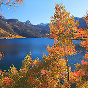 Lake Sabrina Late Afternoon - Fall Color