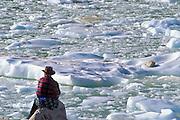 Man looking at icebergs on lake below Mount Edith Cavell, Canadian Rockies, Jasper National Park, Alberta, Canada