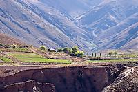 CULTIVOS EN LA SIERRA DE SANTA VICTORIA, CAMINO A IRUYA, PROV. DE SALTA, ARGENTINA