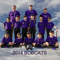 6-24-14 Bobcats Parent Pitch 2014