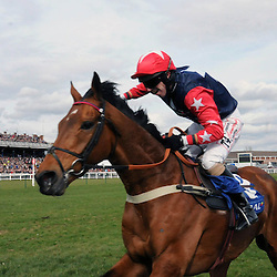 Scottish Grand National | Ayr | 20 April 2013