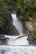 Series of unnamed waterfalls on salmon stream near Gilbert Bay in Port Snettisham of the Inside Passage, Alaska. Southeast. Evening. Summer.