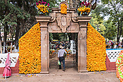 A Purepecha indigenous man carries marigolds into the cemetery during the Day of the Dead festival October 31, 2017 in Tzintzuntzan, Michoacan, Mexico. During the festival which dates back hundreds of years to Aztec rituals, family members decorate the tombs of loved ones and celebrate them with gifts, food and altars.