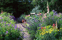 lush borders with geranium and bench