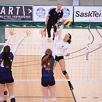 3rd year outside hitter Ashlee Sanford (1) of the Regina Cougars during the home game on January 6 at Centre for Kinesiology, Health and Sport. Credit: Arthur Ward/Arthur Images