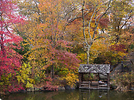 Autumn colors and a rustic shelter at The Lake in Central Park