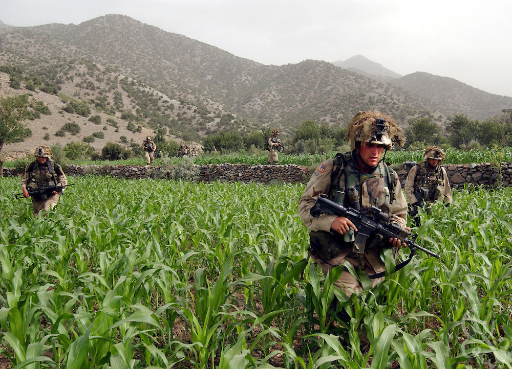 """US Army 101st Airborne 3-187 """"Bravo"""" company infantry cross a corn field while conducting a 23 July, 2002 sensitive site exploitation (SSE) mission in the town of Narizah in Southeastern Afghanistan . The three day mission, intended to deny sanctuary to Al Qaida and Taliban fighters in villages along the Pakistan-Afghanistan border resulted in the recovery of several weapons caches and one Afghan detained for questioning."""