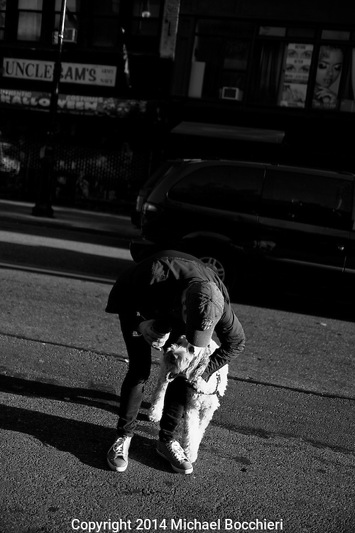 NEW YORK, NY - October 28:  A person and a dog on October 28, 2014 in NEW YORK, NY.  (Photo by Michael Bocchieri/Bocchieri Archive)