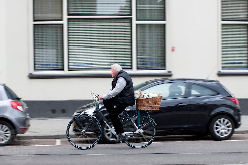 Een oudere man fietst met een hondje achterop door Rotterdam.<br /> <br /> An elder man is cycling with a dog in a basket in Rotterdam.