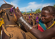 BODI TRIBE FAT MEN<br /> (very) big is beautiful<br /> <br /> Every  year,  takes  place  in the deep south of Ethiopia, in  the <br /> remote  area of Omo valley, the celebration of  the  Bodi  tribe  new <br /> year: the Kael.For  6  months  the  men  from  the tribe will   feed   themselves with only fresh  milk  and  blood  from <br /> the cows. They will not  be allowed to  have sex and to go out of their  little hut.  Everybody will take care of  them, the  girls  bringing  milk  every morning in pots or bamboos. The  winner  is  the  bigger.  He  just <br /> wins fame, nothing special. This  area does not  welcome tourists and has kept his traditions<br /> <br /> Photo shows: The women take care of the fat men: they give them alcohol, remove the sweat, and sing for them to keep them awake.<br /> &copy;Eric lafforgue/Exclusivepix Media