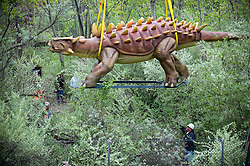 "Apr 25, 2012: An animatronic model Ankylosaurus dinosaur is set in place at Field Station: Dinosaurs in Secaucus, NJ over the next 12 days. The dinosaur theme park is set to open in late May and will be one of the only permanent dinosaur exhibits in the country to use advanced robotics to make the beasts ""move"" in response to visitors. Credit: Rob Bennett for The Wall Street Journal Slug:"
