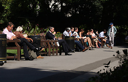 © Licensed to London News Pictures . 29/08/13 . London, UK. People enjoy a hot day in Victoria Embankment Gardens, London. Photo credit : LNP