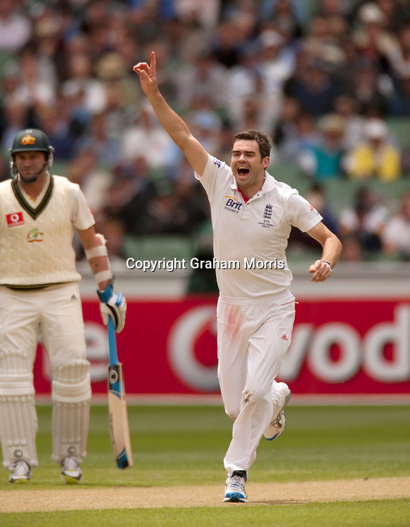 James Anderson celebrates taking the wicket of Mitchell Johnson during the fourth Ashes test match between Australia and England at the MCG in Melbourne, Australia. Photo: Graham Morris (Tel: +44(0)20 8969 4192 Email: sales@cricketpix.com) 26/12/10