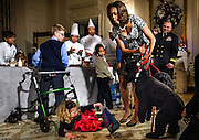 First Lady Michelle Obama attempts to restrain the family dog, Sunny, after he startled Ashtyn Gardner, 2, of Mobile, Alabama, causing her to fall during a holiday craft event, at the White House.