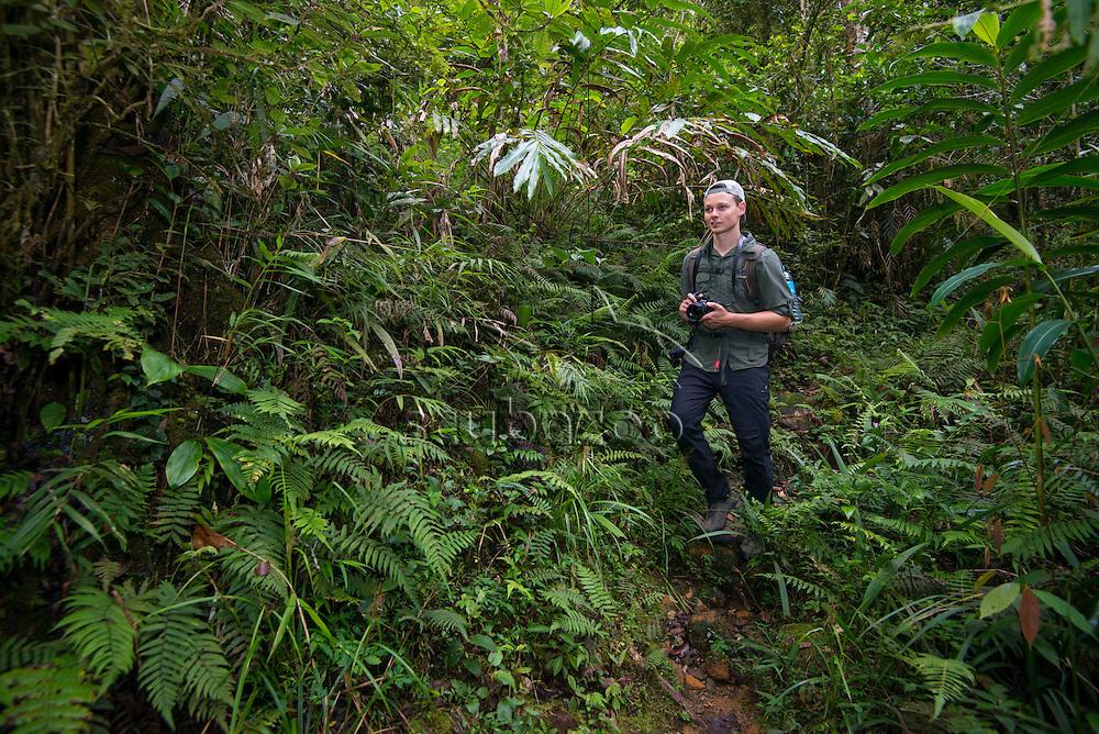 Man walking through the jungle, Mesilau, Mount Kinabalu, Sabah, Malaysia, Borneo,