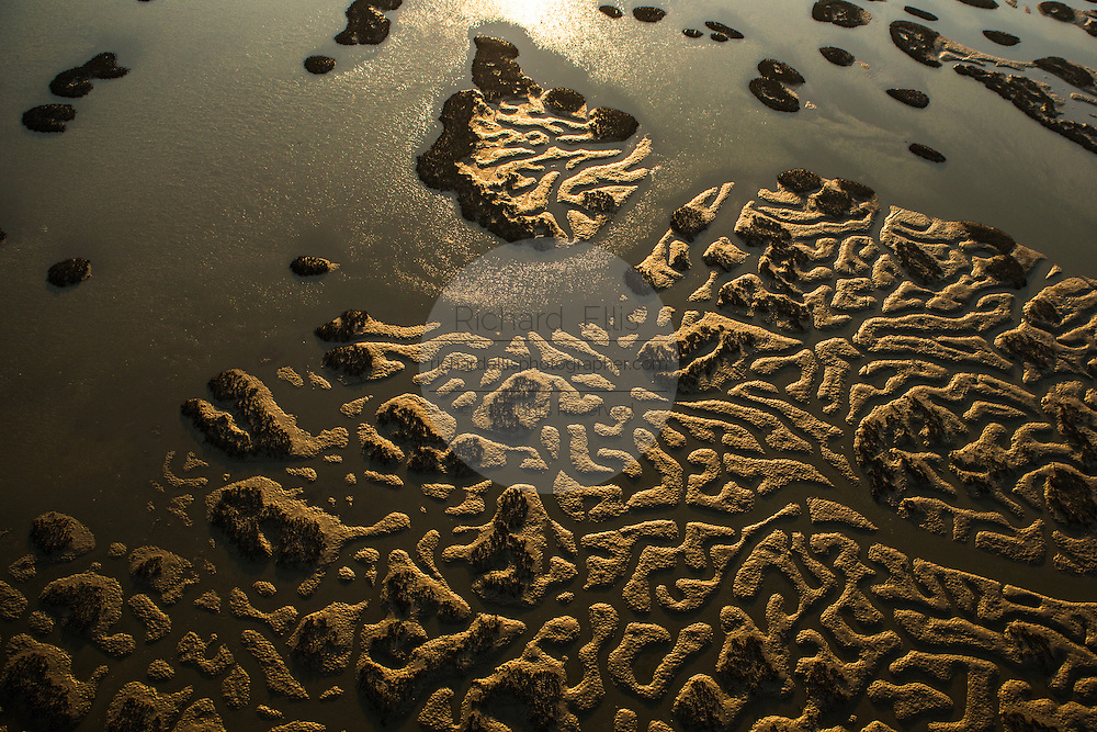 Aerial view of patterns left in the marsh by tidal flows in Bulls Bay in Charleston, SC