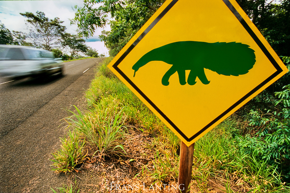Giant anteater road sign cautions drivers, near Emas National Park, Brazil