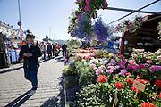 Kauppatori (Market Square). Flowers.