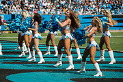 The Top Cats performing in the New Orleans Saints 34 to 13 victory over the Carolina Panthers.