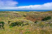 Scorpion Ranch, Santa Cruz Island, Channel Islands National Park, California USA
