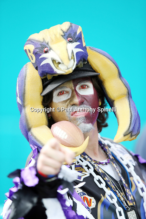 A Baltimore Ravens fan wears team colors, a painted face, and a foam hat as he roots for the team during the Baltimore Ravens 2015 week 13 regular season NFL football game against the Miami Dolphins on Sunday, Dec. 6, 2015 in Miami Gardens, Fla. The Dolphins won the game 15-13. (©Paul Anthony Spinelli)