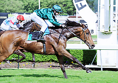 Palmerston North-Racing, Feilding Gold Cup