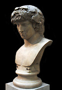 Roman marble bust of Antinous  died AD 130.  Lover of Hadrian, drownd in the River Nile in Egypt.