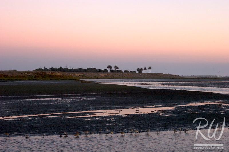 Bolsa Chica Ecological Reserve at Twilight, Huntington Beach, California