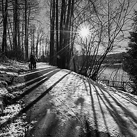 Two people walking a dog along a snowy path