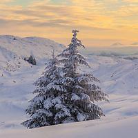 Winter wonderland at Ulriken