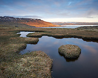 Pond above Ingólfsjörður at sunrise. Mount Seljanesfjall in background. Strandir area, Northwest Iceland.