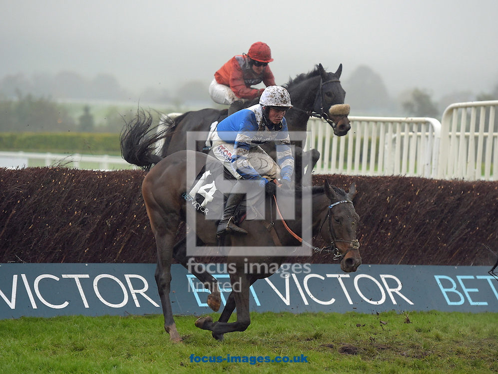A preview of this weekend's favourites in UK Racing.<br /> Picture by Martin Lynch/Focus Images Ltd 07501333150<br /> 09/12/2016<br /> <br /> Original caption:<br /> FRODON at Cheltenham 12-11-16.