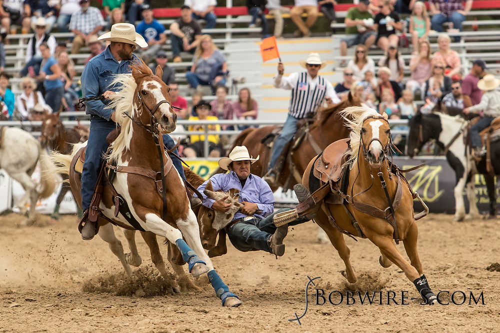 Miguel Garcia makes his steer wrestling run during the third performance of the Elizabeth Stampede on Sunday, June 3, 2018.