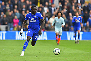 Oumar Niasse (29) of Cardiff City on the attack during the Premier League match between Cardiff City and Chelsea at the Cardiff City Stadium, Cardiff, Wales on 31 March 2019.