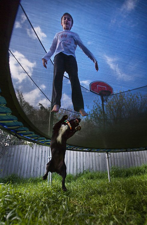 A boy &amp; a small dog have fun jumping with a trampoline melbourne photographers, commercial photographers, industrial photographers, corporate photographer, architectural photographers, This photograph can be used for non commercial uses with attribution. Credit: Craig Sillitoe Photography / http://www.csillitoe.com<br /> <br /> It is protected under the Creative Commons Attribution-NonCommercial-ShareAlike 4.0 International License. To view a copy of this license, visit http://creativecommons.org/licenses/by-nc-sa/4.0/.