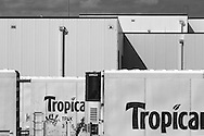 Empty reefers sit outside the massive Tropicana facility in Bayonne, NJ, awaiting return to Florida for filling.