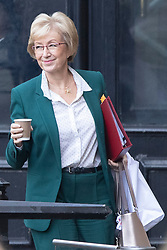 © Licensed to London News Pictures. 16/10/2019. London, UK. Secretary of State for Business, Energy and Industrial Strategy Andrea Leadsom walks in The Houses of Parliament.  Photo credit: George Cracknell Wright/LNP