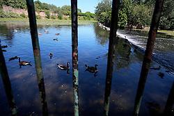 UK ENGLAND LEICESTER 30JUN15 - The river Soar at Abbey Park, Leicester city.<br /> <br /> jre/Photo by Jiri Rezac / WWF UK<br /> <br /> © Jiri Rezac 2015