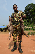Bushmeat inspection & Western blue duiker (Philantomba congica)<br /> Yengo Eco Guard control point<br /> Odzala - Kokoua National Park<br /> Republic of Congo (Congo - Brazzaville)<br /> AFRICA