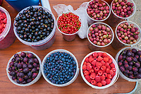 Russie, Siberie, Bouriatie, fruits rouges sur un marche // Russia, Siberia, red fruit in local market