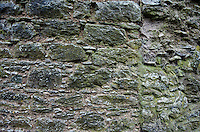 Stone detail at Blarney Castle, Country Cork, Ireland