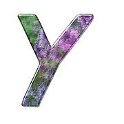 The Capitol Letter Y Part of a set of letters, Numbers and symbols of 3D Alphabet made with a floral image on white background