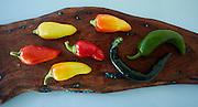 chilaca, anaheim, floral gem peppers