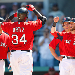 February 28, 2011; Fort Myers, FL, USA; Boston Red Sox first baseman David Ortiz (34) is greeted by teammates after hitting a homerun during a spring training exhibition game against the Minnesota Twins at City of Palms Park.  Mandatory Credit: Derick E. Hingle