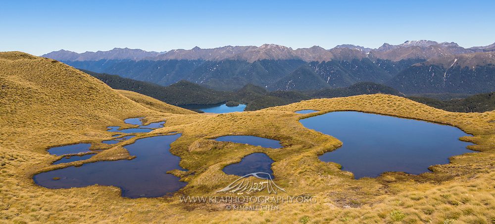 Mount Burns Tarns Track, Fiordland, New Zealand