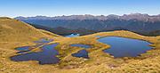 Mount Burns Tarns Track, Fiordland, New Zealand