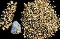 Saül village - goldfinder - Gold  -French Guyane - France